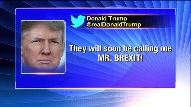 TrumpMrBrexit