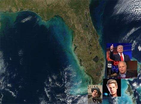 Awesome-Florida-Satellite-Image